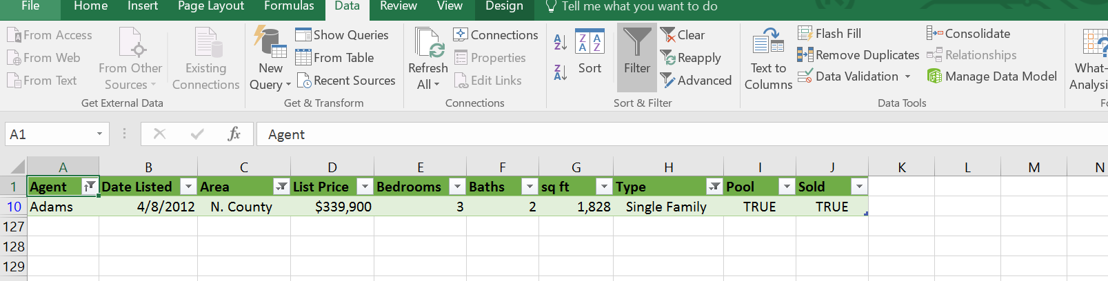 A filtered Excel table
