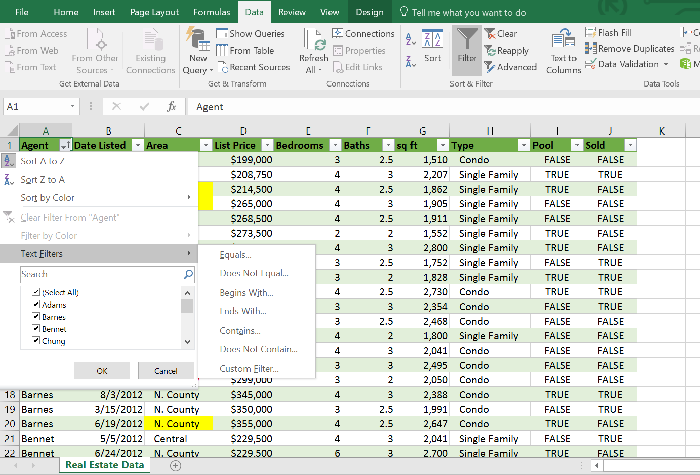 Text Filtering Options, Excel Table