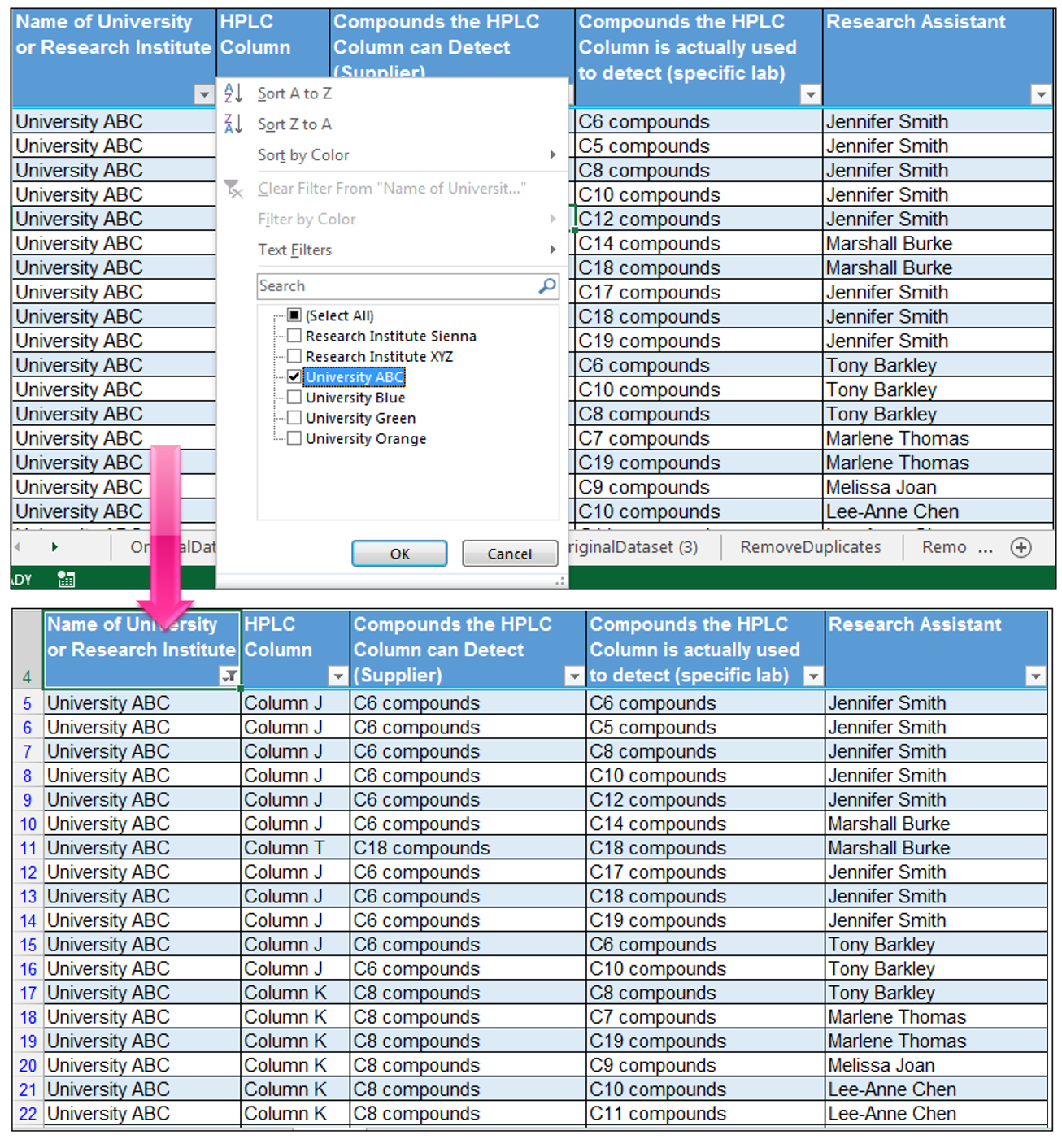 Filter Unique Values Excel