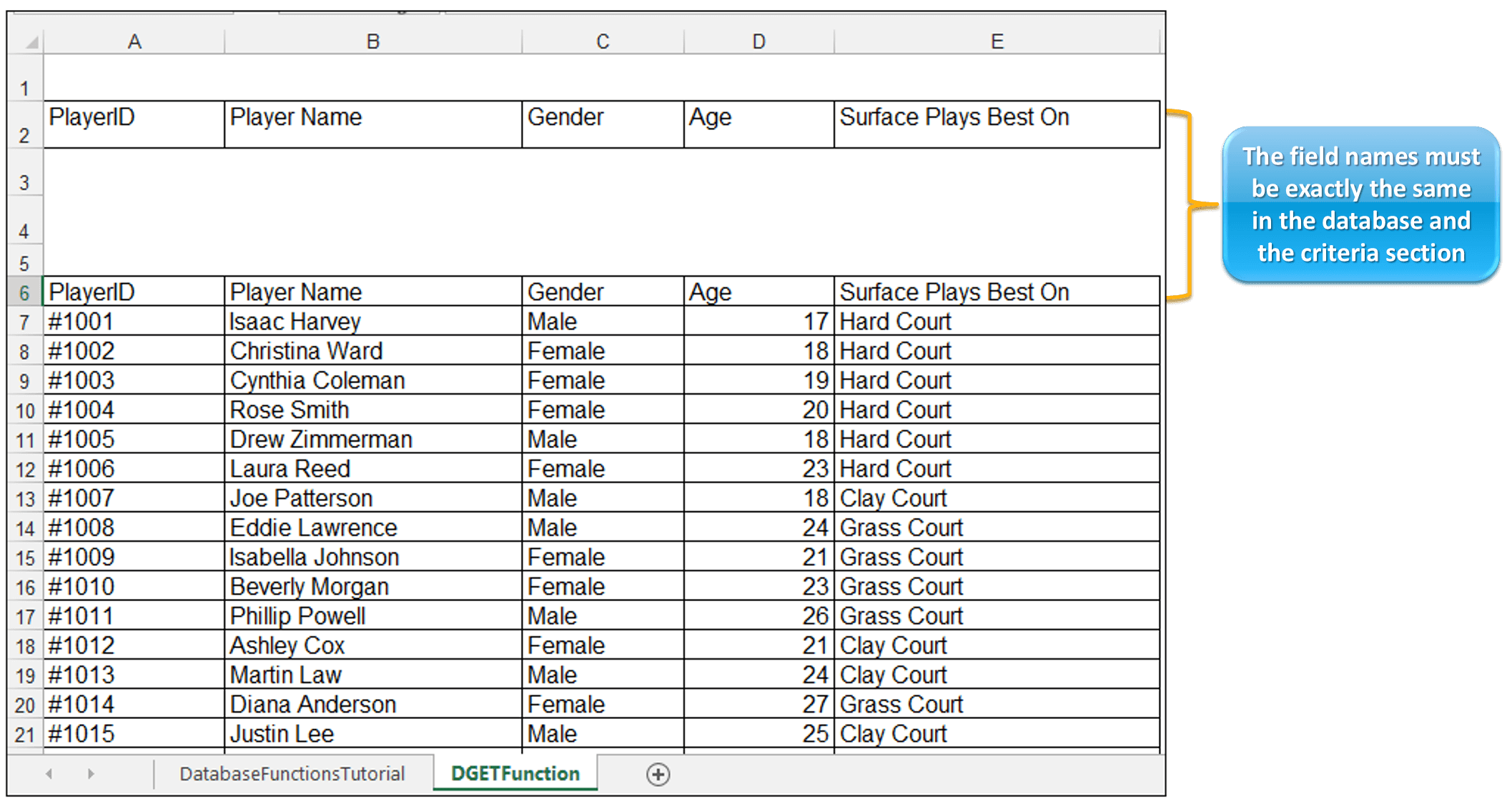 DGET Excel Function, Tennis Player Database