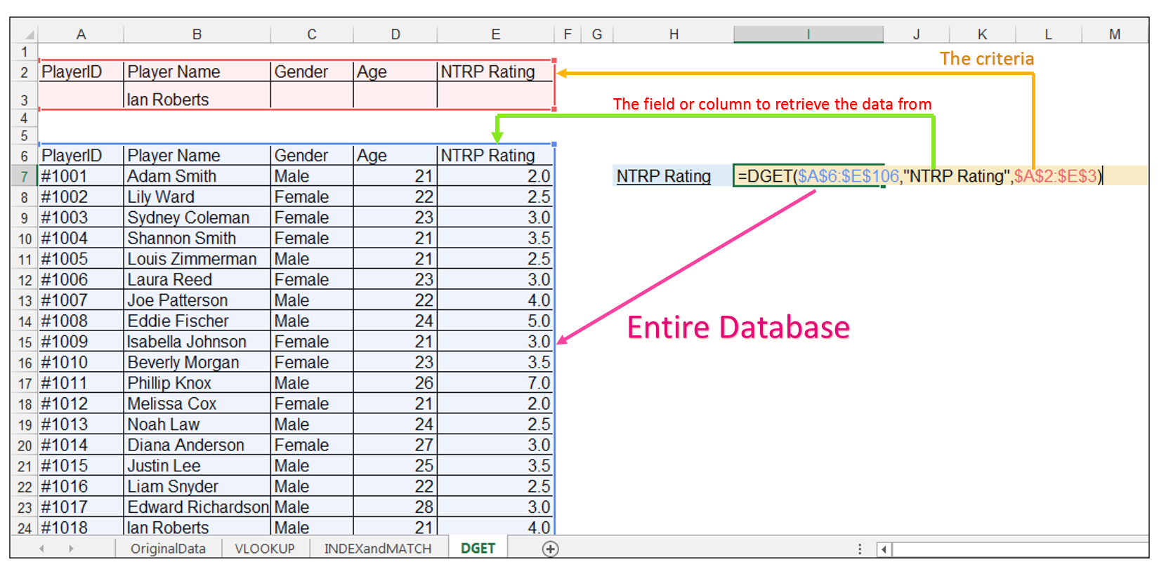 DGET Function Excel Image 2