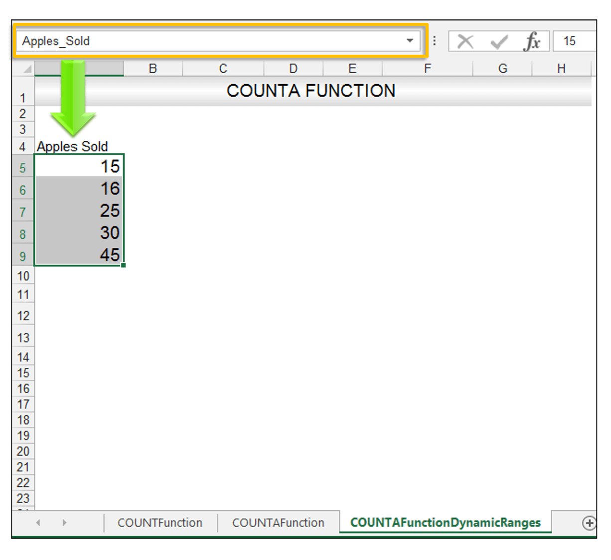 Excel COUNTA Function Image 4