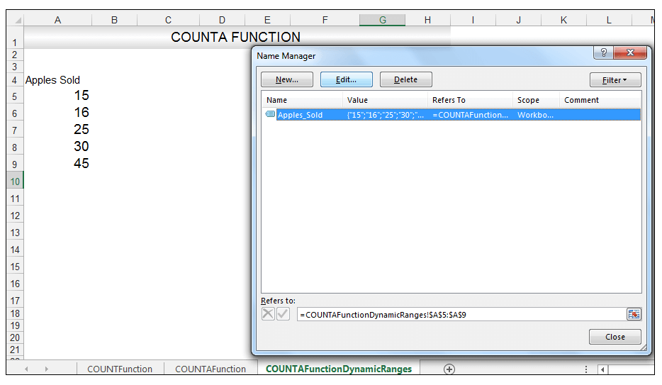 Excel COUNTA Function Image 6