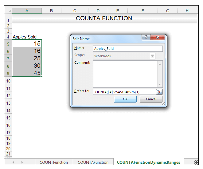 Excel COUNTA Function Image 7