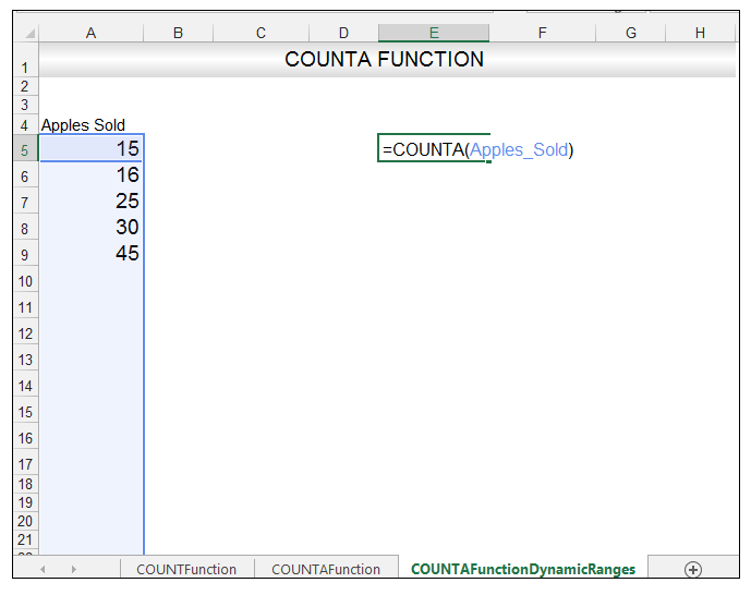 Excel COUNTA Function Image 9