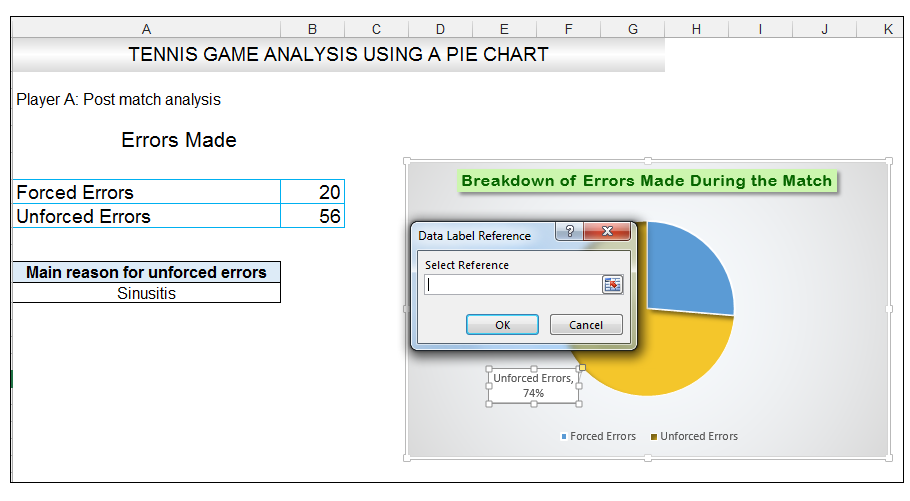 Add rich data labels to Excel Pie Chart Image 36