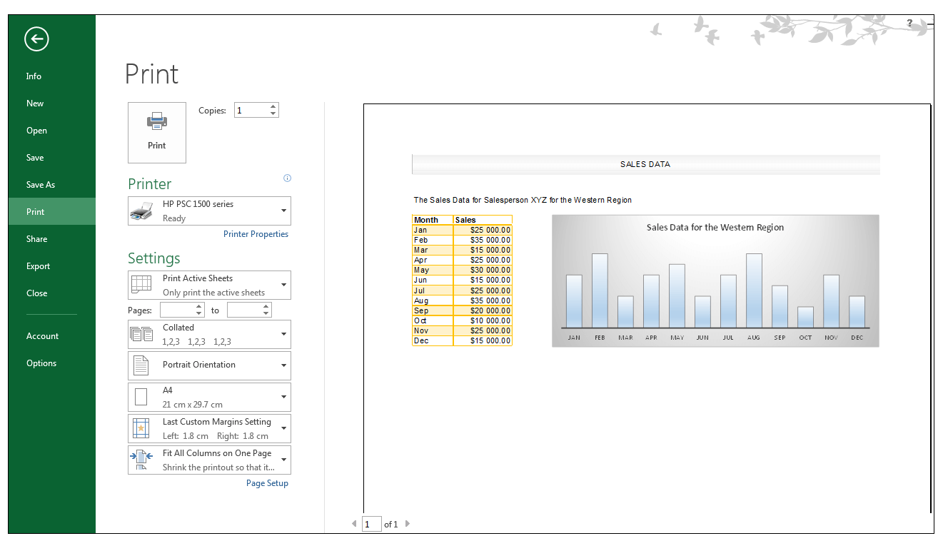 Print Preview in Excel