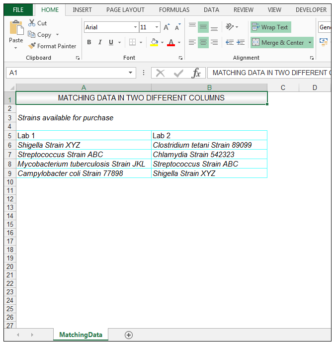 How to Compare Two Columns in Excel to Find Differences - Image 1