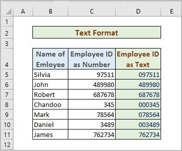 Text Format to Store Number As Text