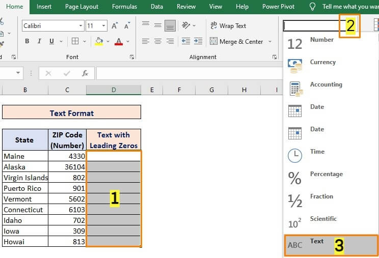 Using Text Format for Converting Number to Text with Leading Zeros
