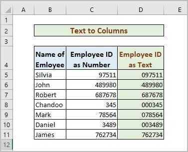 Text Columns to Store Number As Text