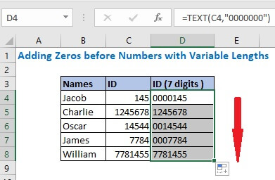 Copy down the formula up to D8 to get all leading zero format