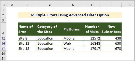Advanced Filter option output