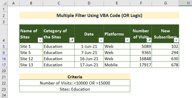 VBA OR Operator for Multiple Filters