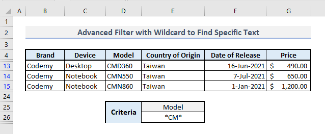advanced filter with wildcard to find specific text in excel