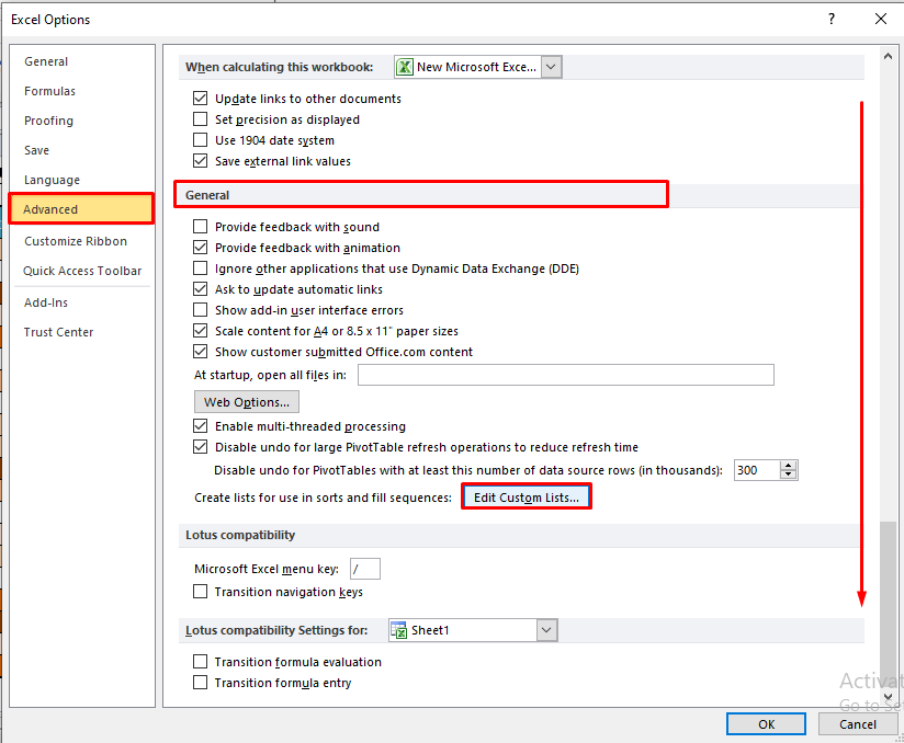 Edit Custom Lists Button in Excel