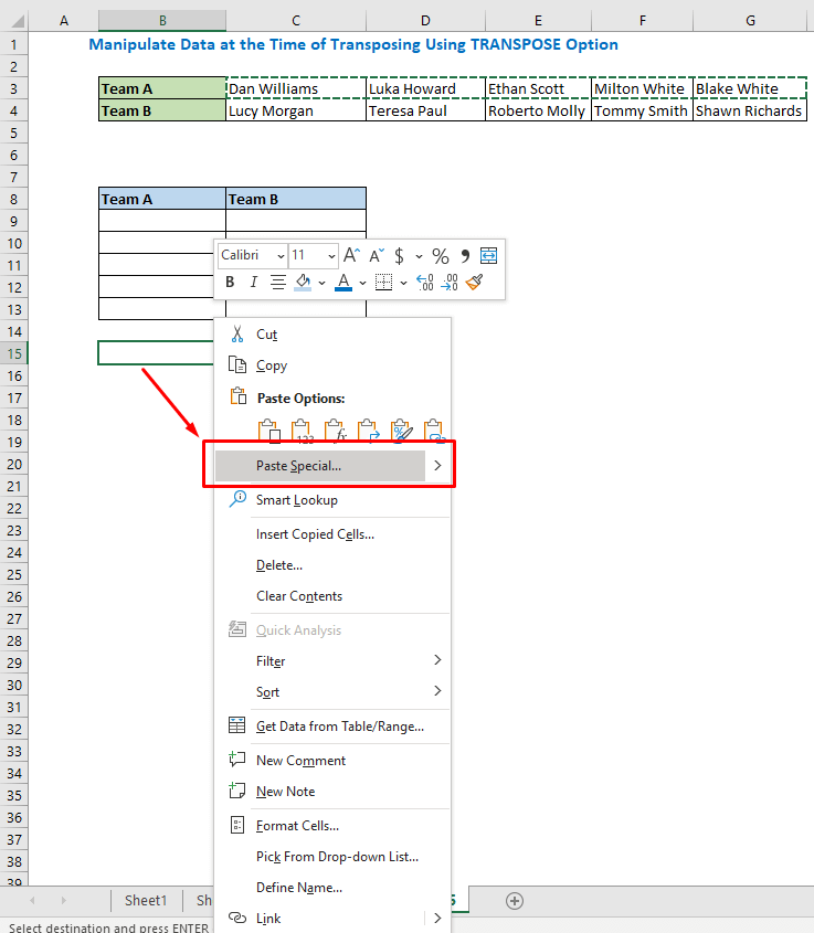 Select cell B9 and right-click on the mouse. Select Paste Special from the options